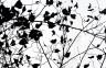 Ramas negras-130x90 cm-acrílico sobre canvas